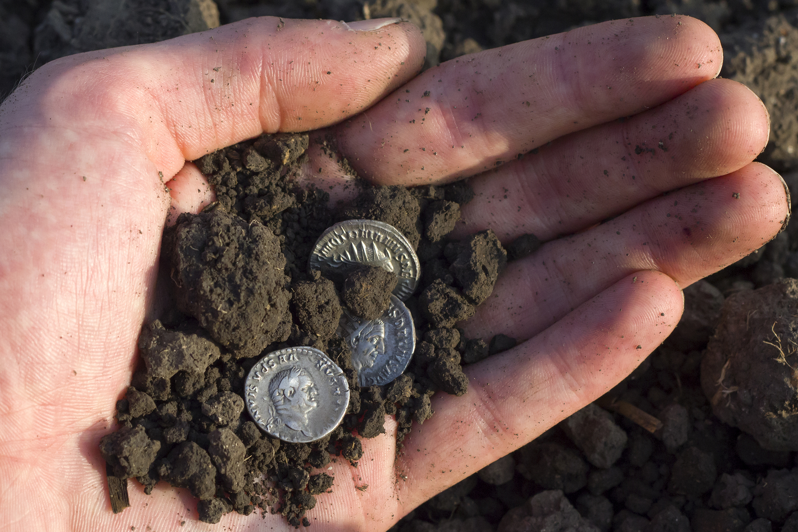 Discovery of ancient coins